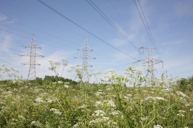 Elektros energetikos sistema pasiruošusi vasarai