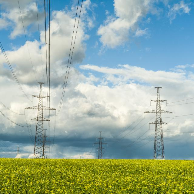 During the first month of summer electricity price traditionally rose