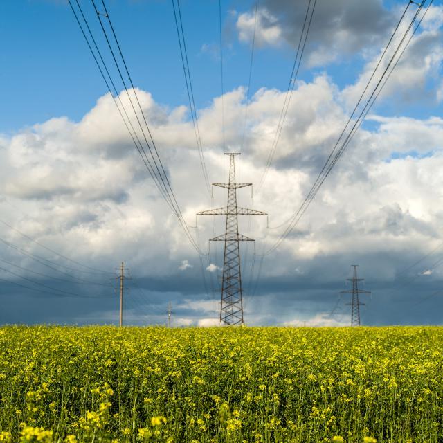 """""""Litgrid"""" vadovas: """"LitPol Link"""" padidins viso regiono energetinį saugumą ir konkurencingumą"""