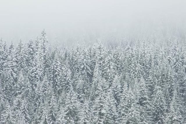 Lietuvos elektros sistemos stabilumą žiemą užtikrins tarpsisteminės jungtys