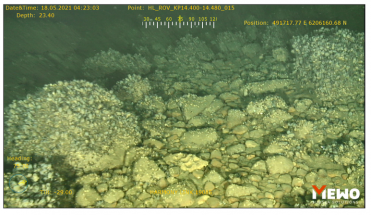 """Ruošiantis """"Harmony Link"""" kabelio tiesimui užbaigtas jūros dugno tyrimas: tarp radinių – ir nuskendęs laivas"""