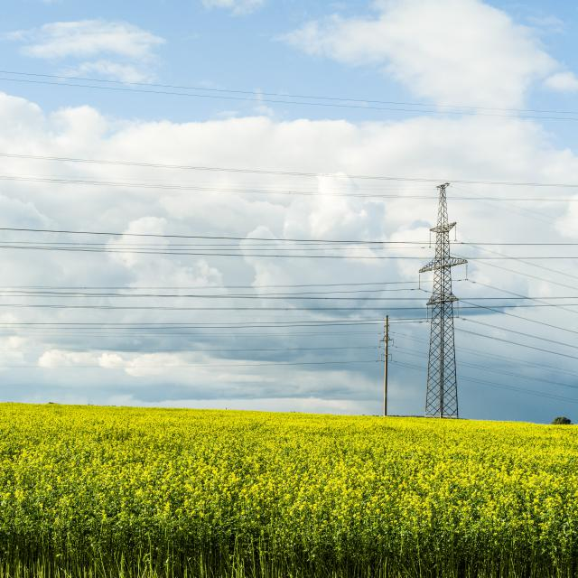 The Lithuanian High Voltage Electricity Transmission Network is Safe